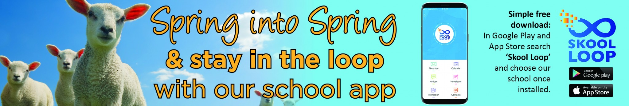Skool Loop Spring
