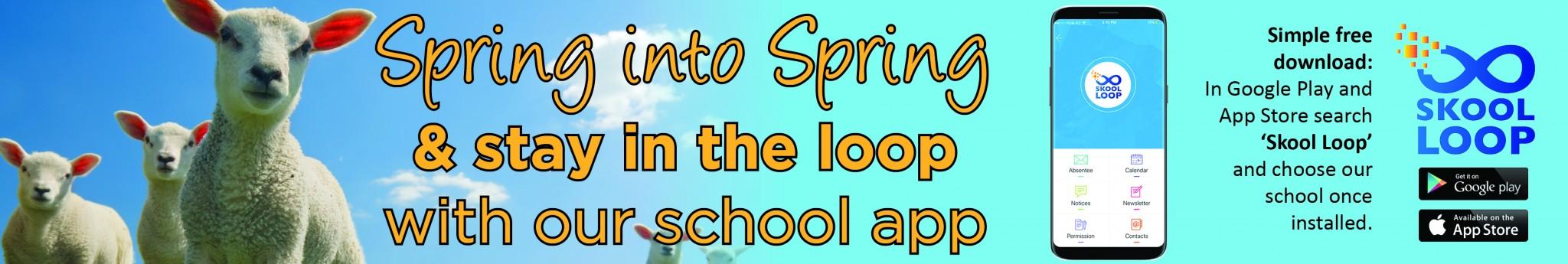 Skool Loop Spring